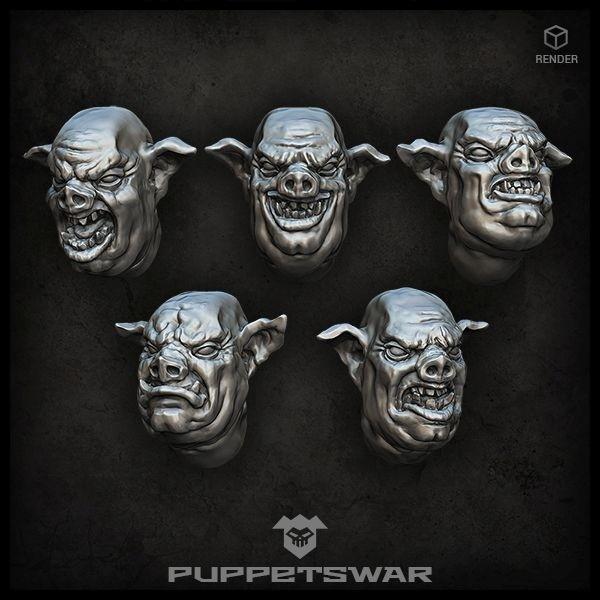 Pig Hybrid Heads